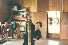 016 - tokutomi dojo 1979